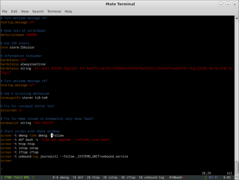 GNU Screen Tip #1