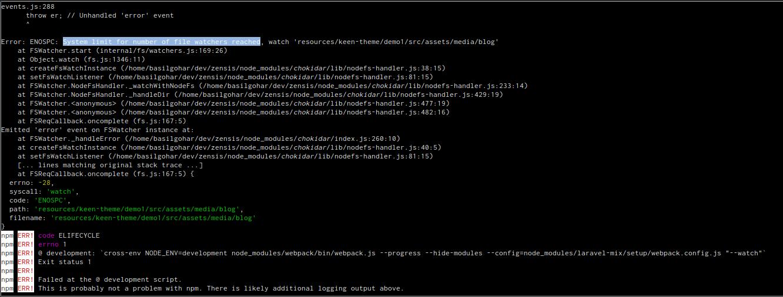 screenshot of npm error message